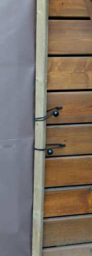 Ball bungees attached to a piece of wood